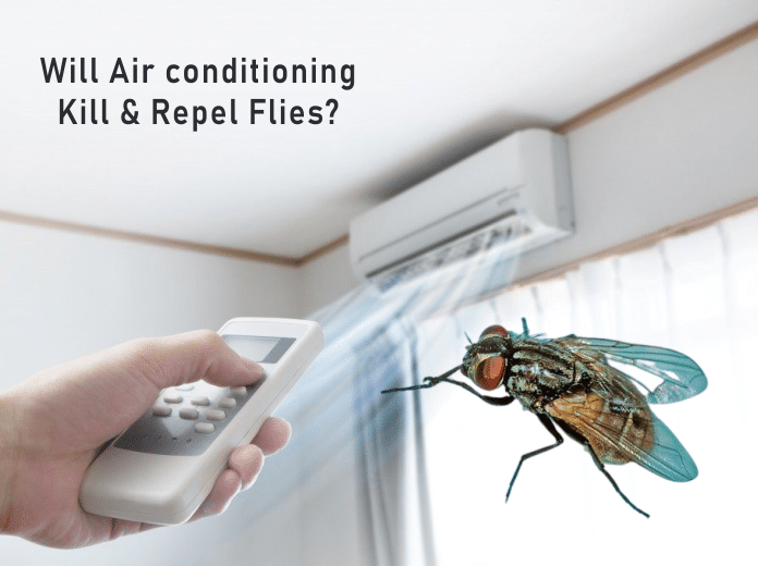 Will Air Conditioning Kill Flies?